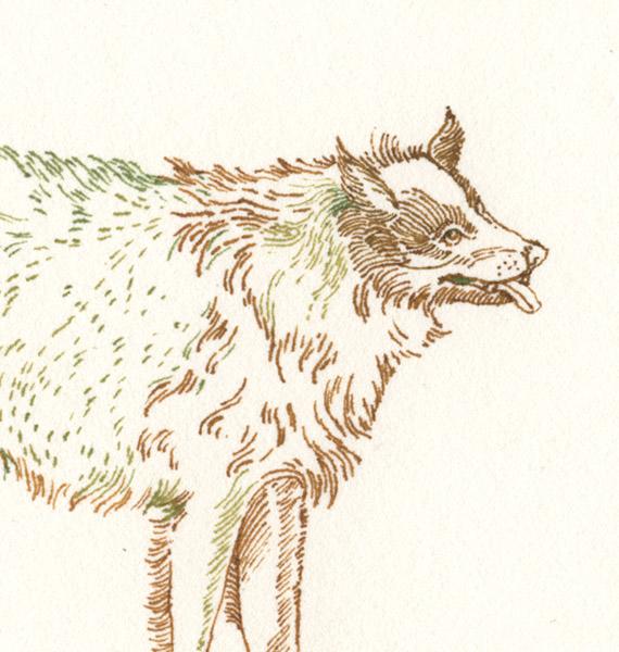 2-dogs001-det.jpg