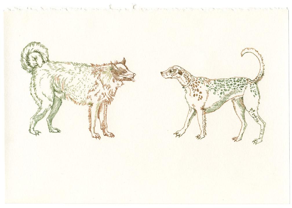 2-dogs001.jpg