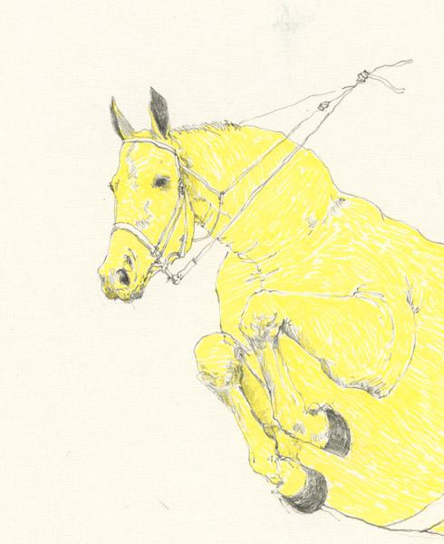 jumping-horse-det.jpg