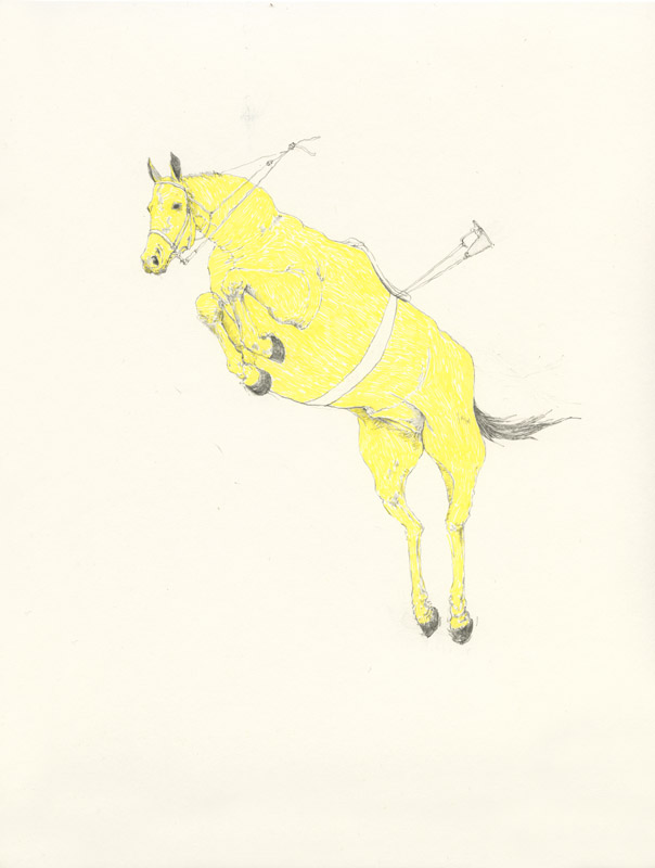 jumping-horse.jpg
